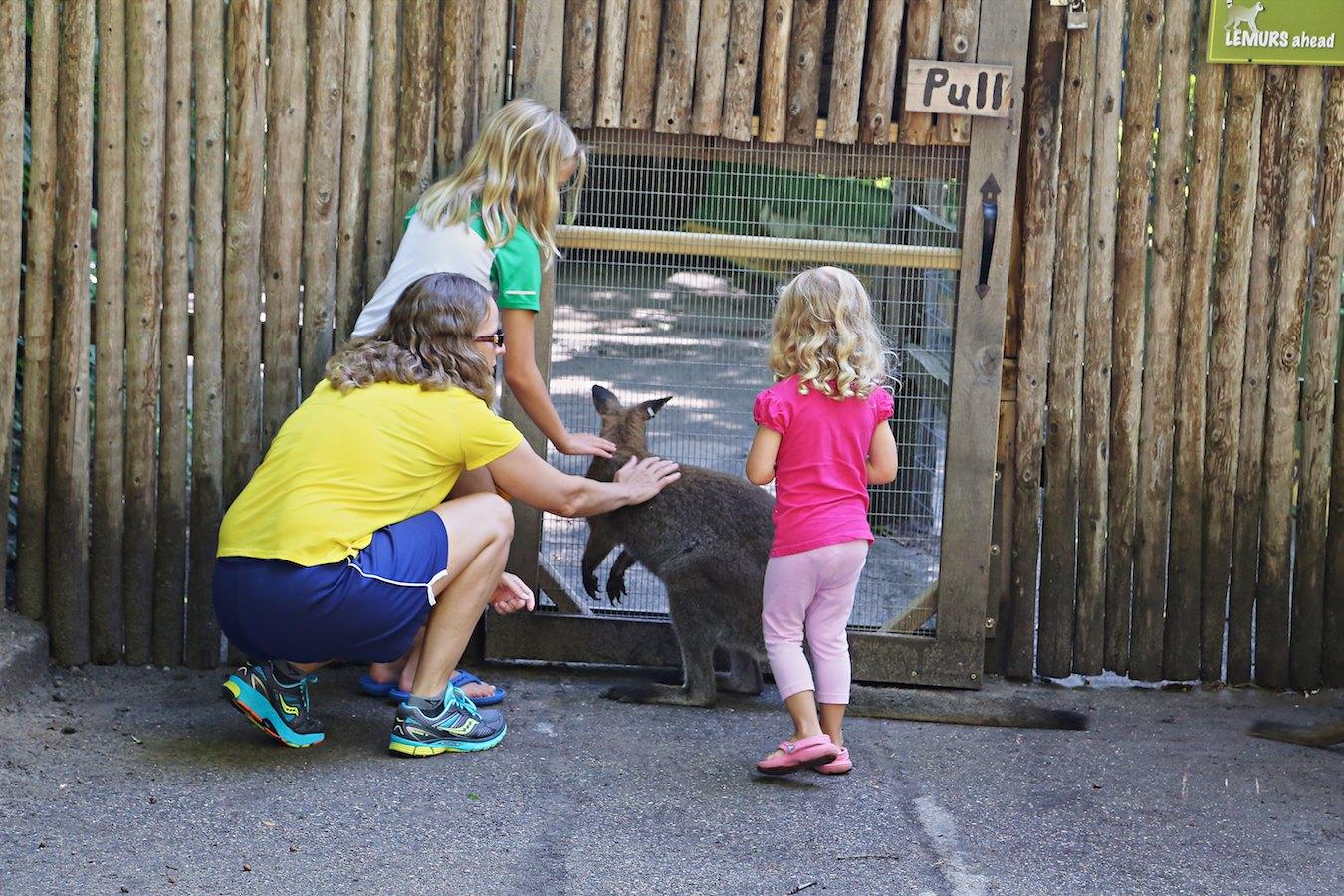 John Ball Zoo 2014