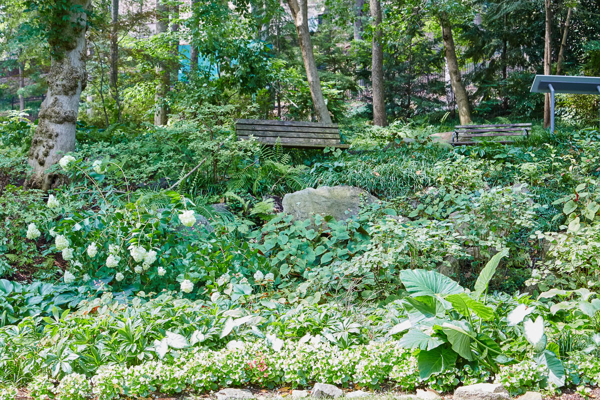 This bench at Falls Park is tucked into a lovely shaded spot in the gardens