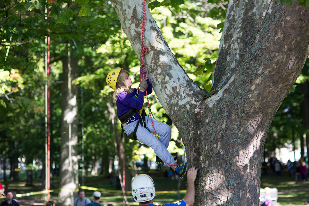 Michigan Tree Climbing Championship