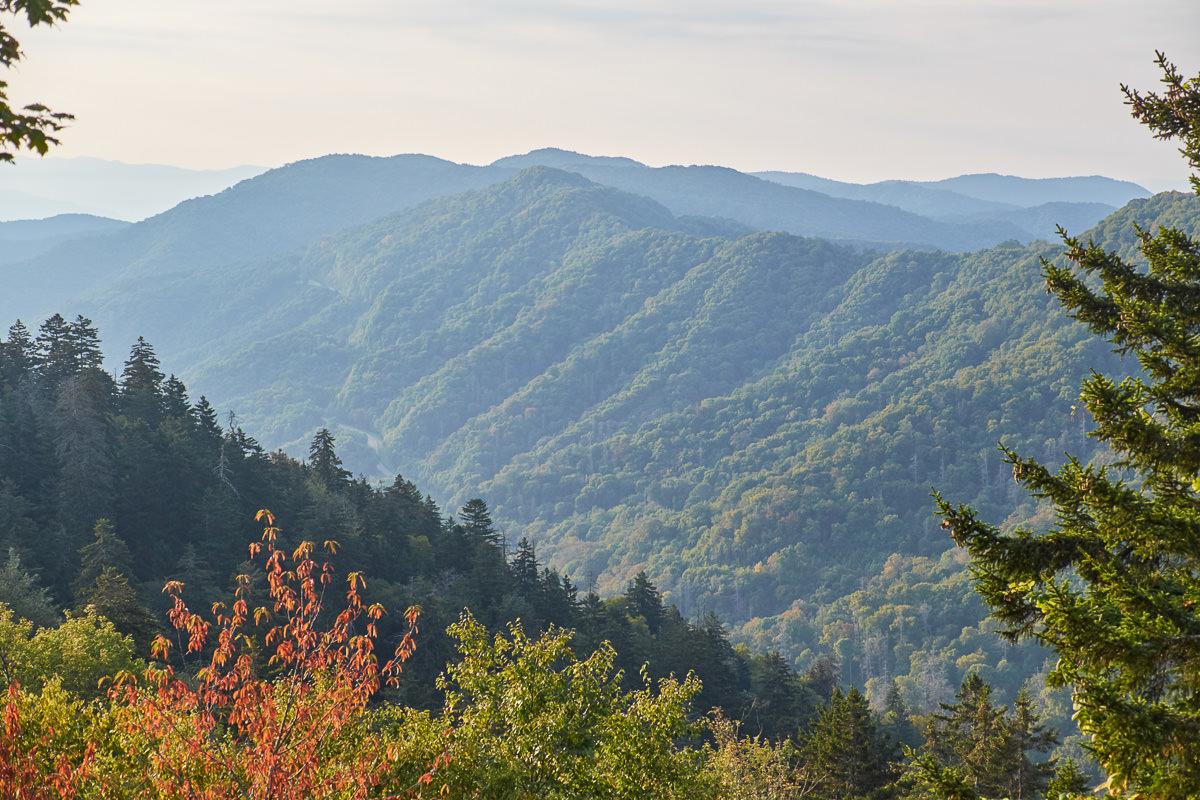 Newfound Gap Road, GSMNP