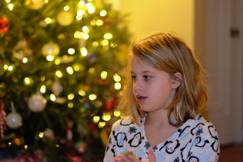 Dec_25_2015_DSCF7244