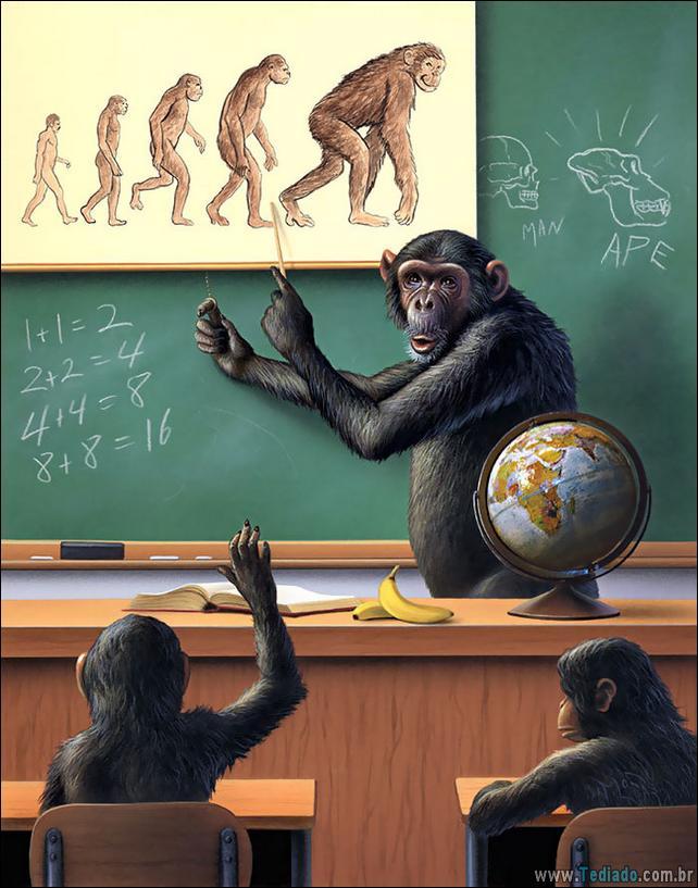 ilustracoes-chocantes-animais-sentem-26