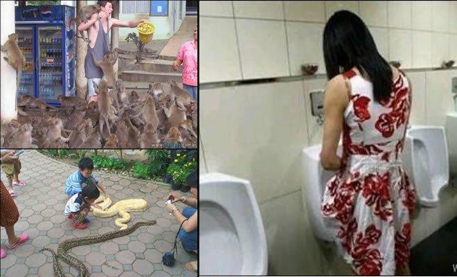 18 fotos estranhas de Tailândia 1