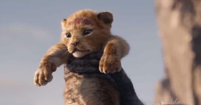 Alguém comparou o Rei leão de 1994 a animação com o filme 2019 4