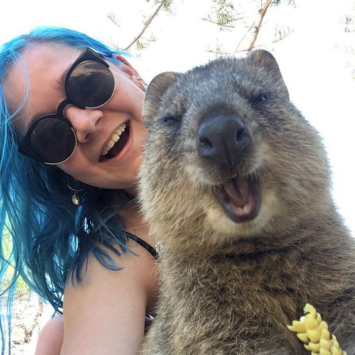 19 fotos loucas que provam que a Austrália é um desafio para todos 13