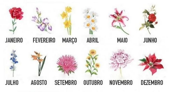 A flor do seu aniversário vai revelar quem você realmente é 4
