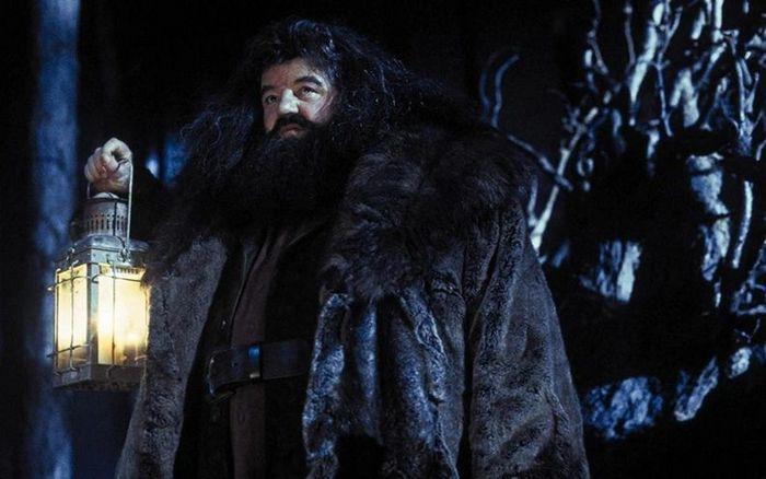 23 momentos em Harry Potter que não faz sentido nenhum 9