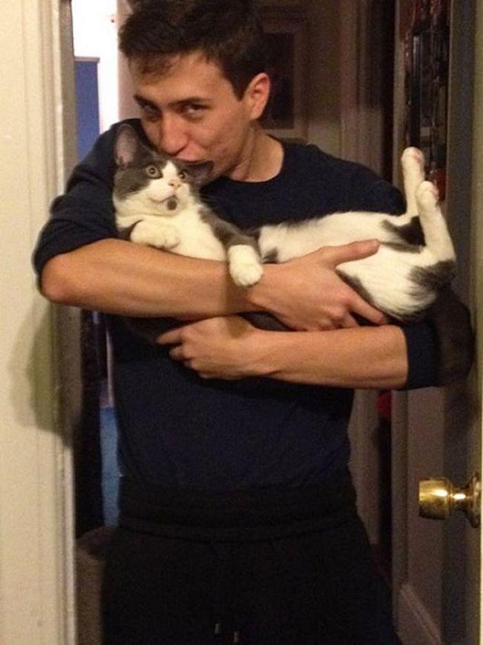 22 gatos odeiam abraços 20