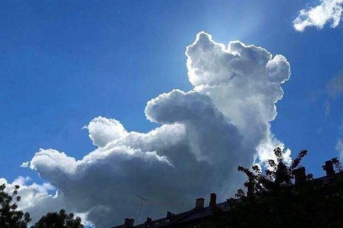 Não se esqueça de olhar para o céu às vezes é lindo (24 fotos) 2