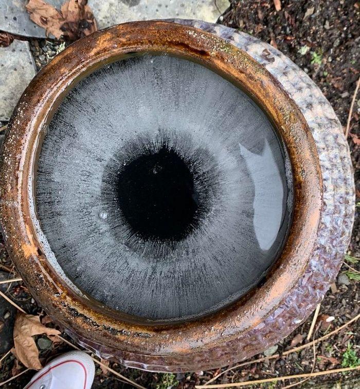 21 fotos hipnotizantes que irão incomodar sua mente 5