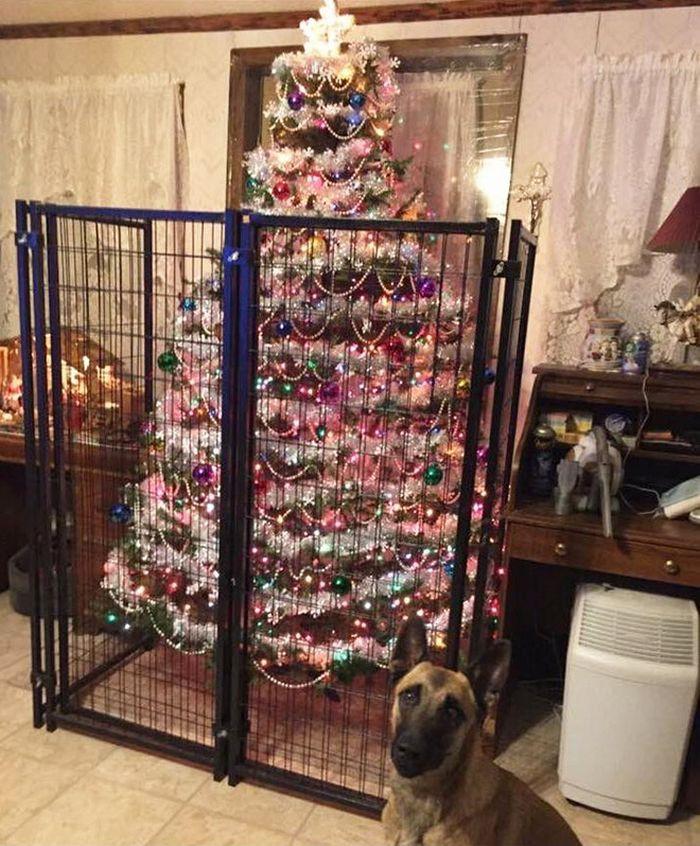 21 dicas genias de como proteger sua árvore de Natal dos animais de estimação 10