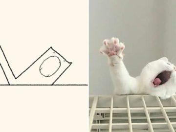 21 desenhos de gato realmente precisos 36