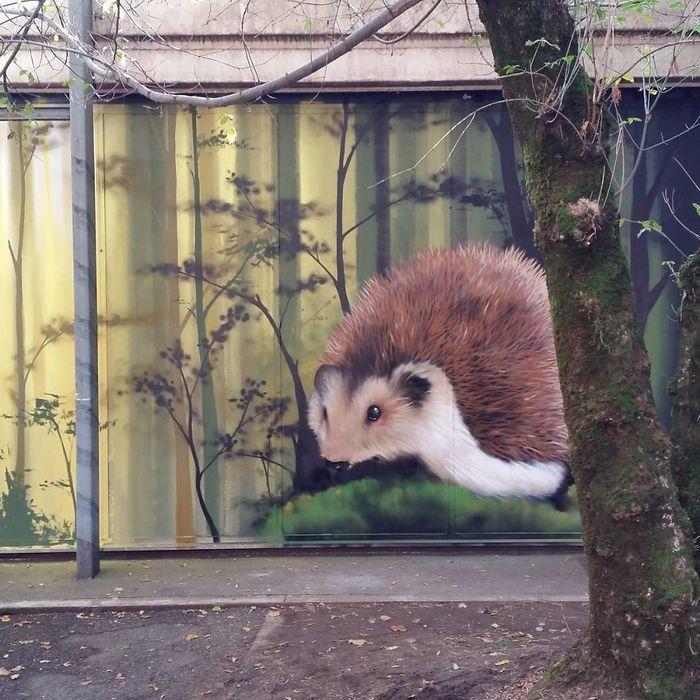 30 fotos de arte de rua em 3D que interagem com seus arredores 30