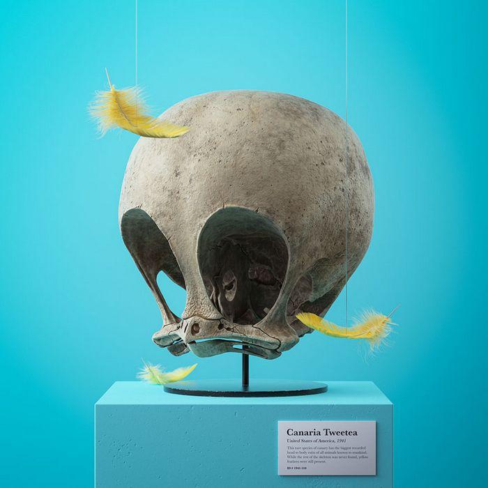 Ilustrador cria fósseis de crânio anatômico de personagens de desenhos animados icônicos 12