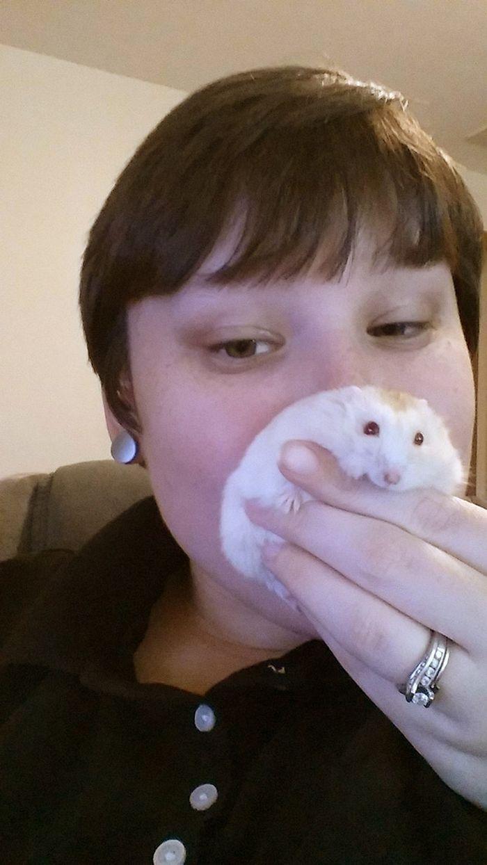 20 panquecas de hamster 21