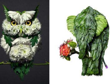 37 retratos delicados de animais criados a partir de coisas encontradas na natureza por Raku Inoue 8