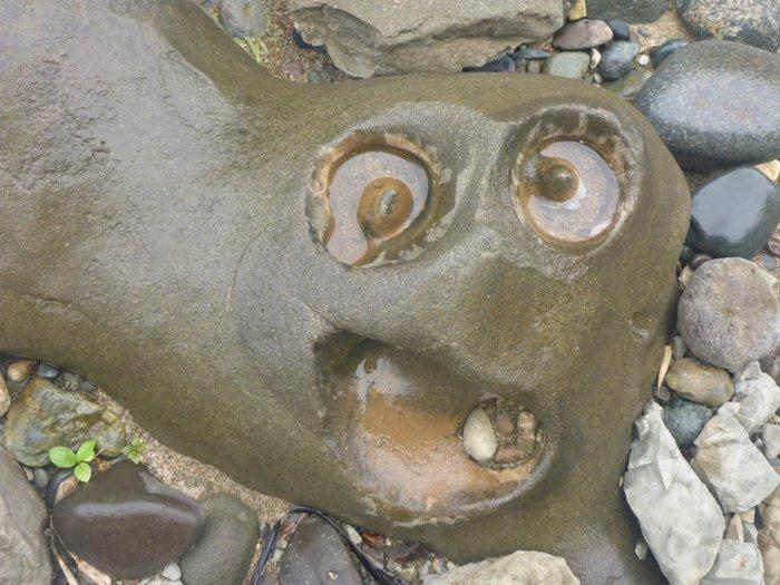 Você consegue ver rostos de bêbados nesses objetos inanimados? 2