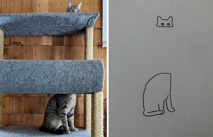 45 das postagens mais engraçadas sobre gatos que são impossíveis de não rir 46
