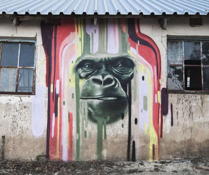 Artista sul-africano pinta grafites incríveis que interagem com o ambiente (32 fotos) 3