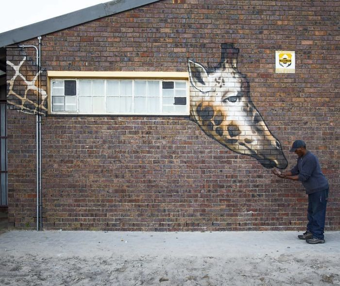 Artista sul-africano pinta grafites incríveis que interagem com o ambiente (32 fotos) 4