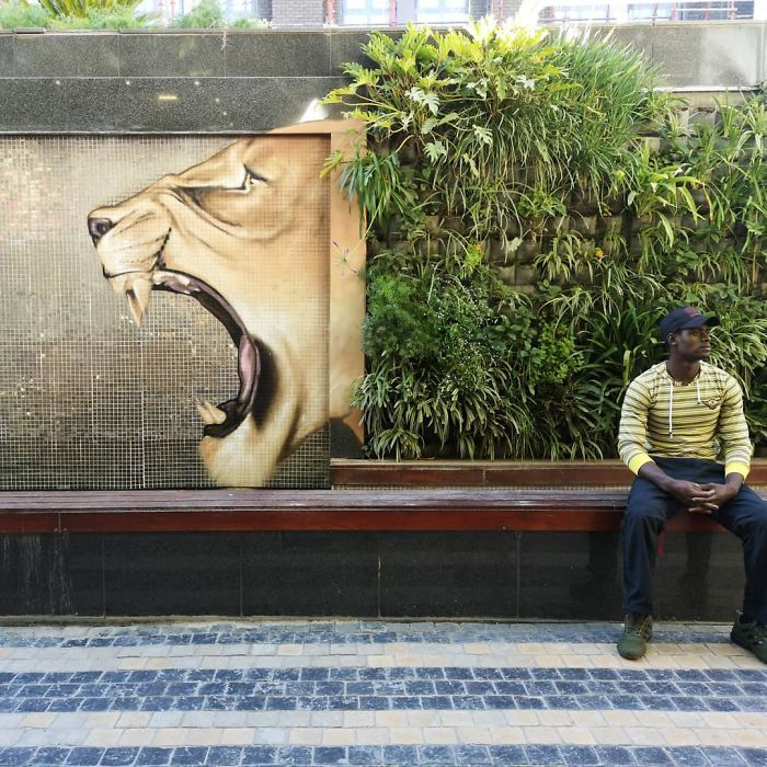 Artista sul-africano pinta grafites incríveis que interagem com o ambiente (32 fotos) 18