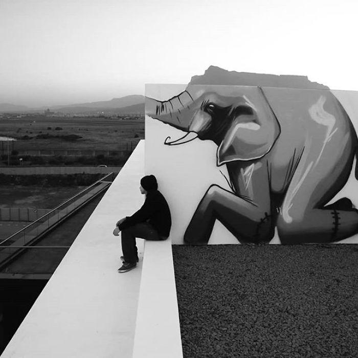 Artista sul-africano pinta grafites incríveis que interagem com o ambiente (32 fotos) 21