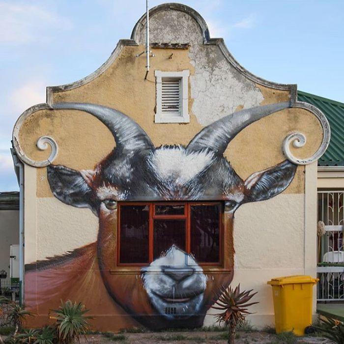 Artista sul-africano pinta grafites incríveis que interagem com o ambiente (32 fotos) 22