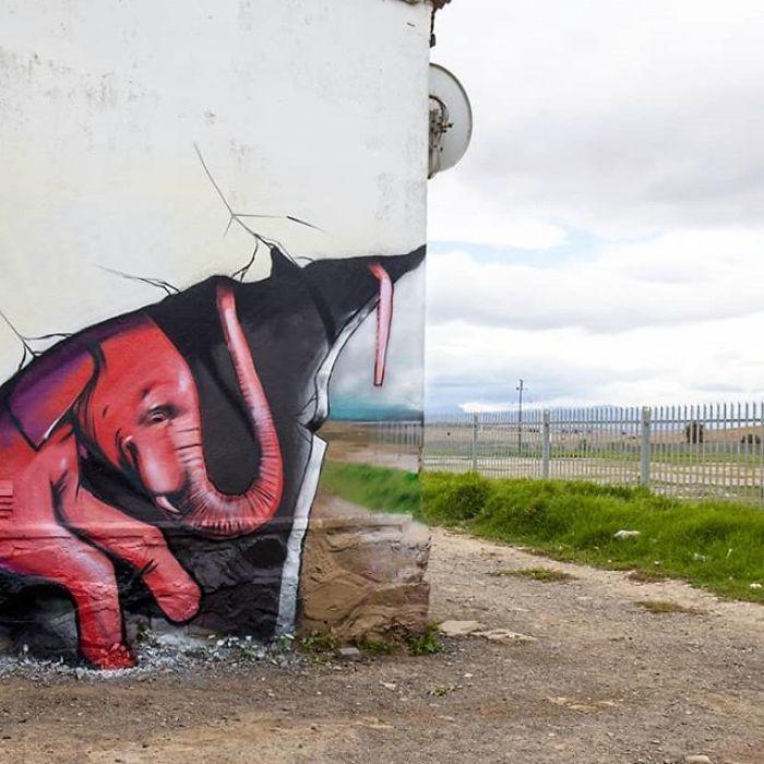 Artista sul-africano pinta grafites incríveis que interagem com o ambiente (32 fotos) 29
