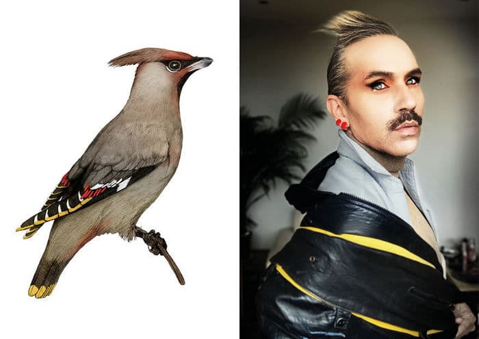 Eu crio estes looks de moda e maquiagem inspirados nos pássaros que desenho 9