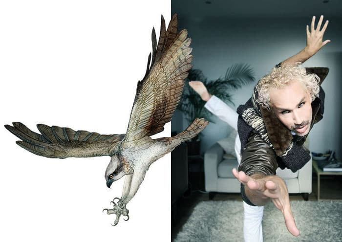 Eu crio estes looks de moda e maquiagem inspirados nos pássaros que desenho 11