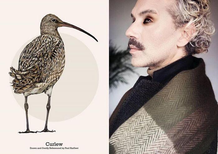 Eu crio estes looks de moda e maquiagem inspirados nos pássaros que desenho 18