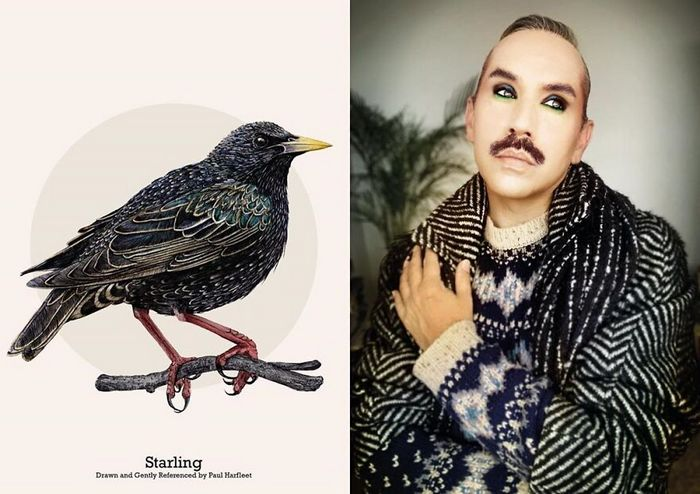 Eu crio estes looks de moda e maquiagem inspirados nos pássaros que desenho 22