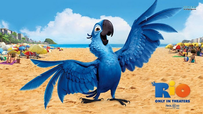 Não importa minha idade eu sempre vou amar filmes de animação 3