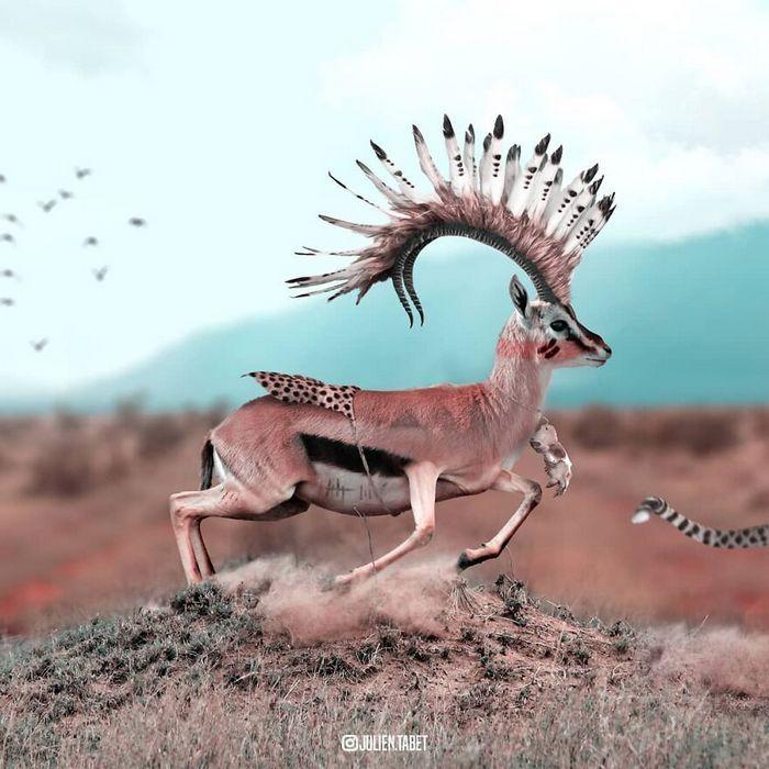 Aqui está o que eu imagino que os animais fazem quando não estamos olhando 17