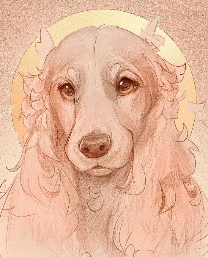 Artista cria ilustrações fofas de animais selvagens e animais de estimação 29