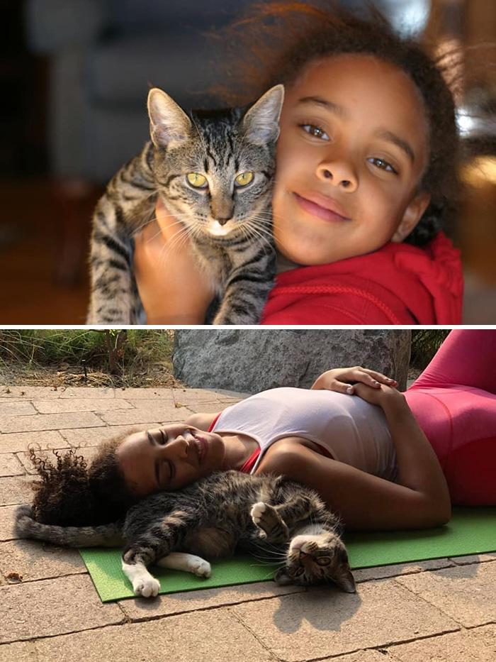 As pessoas estão compartilhando fotos lado a lado com seus animais para o Desafio de antes e agora 29