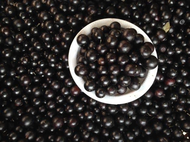 Você come estas frutas com ou sem semente? 26