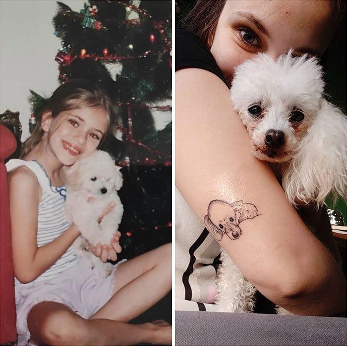 40 adoráveis cães antes e depois de crescer 37
