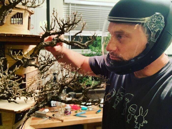 24 fantásticas casas na árvore de bonsai 11
