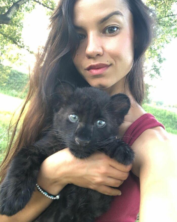 Pantera rejeitada pela mãe conquista internet ao lado do irmão Rottweiler 12
