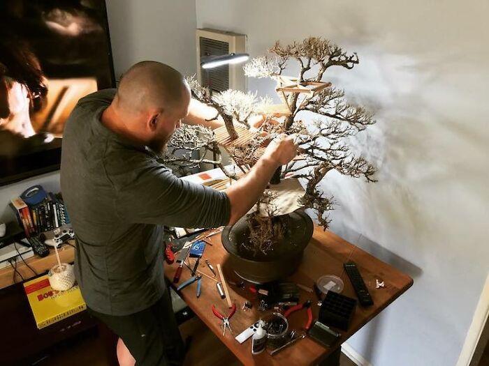 24 fantásticas casas na árvore de bonsai 13
