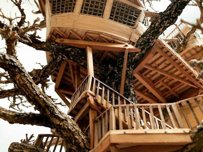 24 fantásticas casas na árvore de bonsai 25