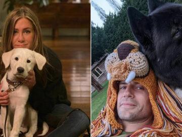 38 celebridades que são verdadeiros amantes de cães 4