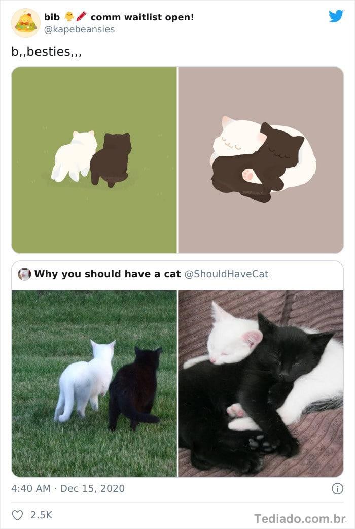 Bib transforma fotos engraçadas de animais em desenhos fofos 8