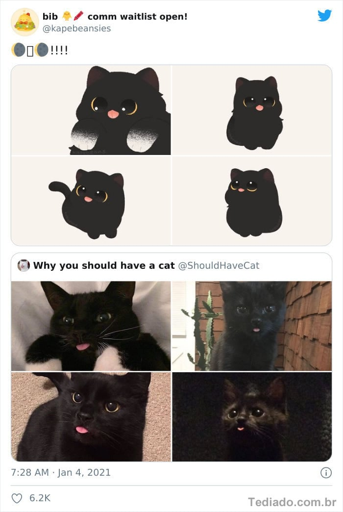 Bib transforma fotos engraçadas de animais em desenhos fofos 9