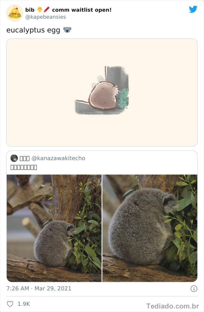 Bib transforma fotos engraçadas de animais em desenhos fofos 28