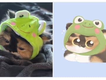 Bib transforma fotos engraçadas de animais em desenhos fofos 2