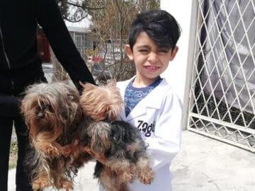 Menino de 7 anos abriu seu próprio negócio com o slogan Lavam-se cães com carinho 43