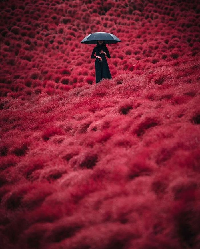 Um fotógrafo captura a beleza hipnotizantes da Ásia 16