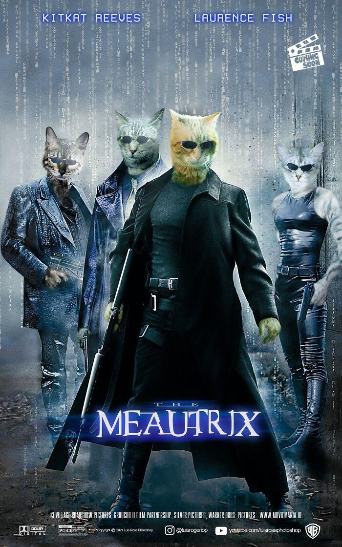 Artista recria pôsteres de filmes e substitui atores por gatos e cães (19 fotos) 5